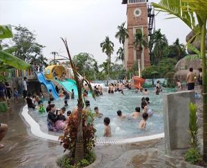 Mẫu Hồ Bơi Cộng Đồng Và Thi Đấu JAP